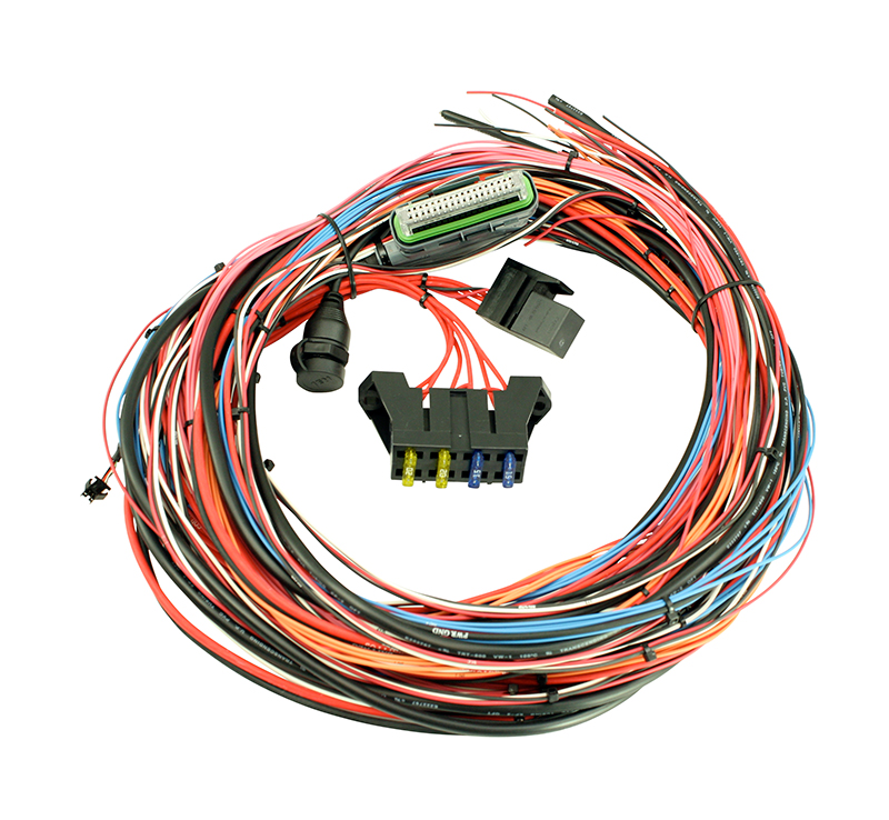 Engine wiring harness AEM Infinity 6-8h